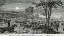 """THE GREAT CATTLE RAID AT HARRISON'S LANDING, September 16, 1864""."